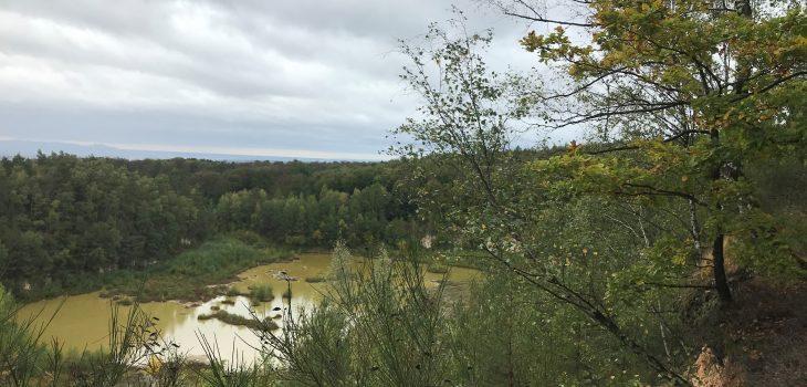 Blick auf Steinbruchsee